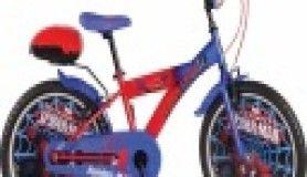 Her çocuk bir bisikleti olmasını hayal eder