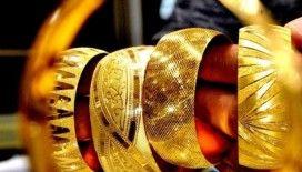 Merkez bankası bu yıl 20 ton altın satın almayı planladı