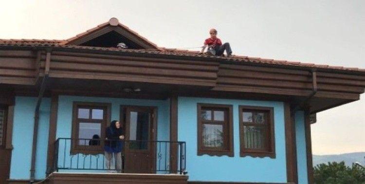 Çatıda mahsur kalan kırlangıcın imdadına NAK yetişti