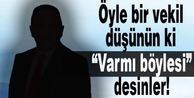 Türkiye'de vekil olmak
