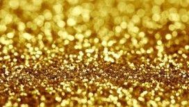 Merkez Bankası'na yatırılan altınlar 1.1 tonla arttı