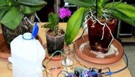 Lise öğrencilerinden 'cepten çiçek sulayan' sistem