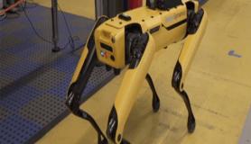 Kamyon çeken robot köpekler