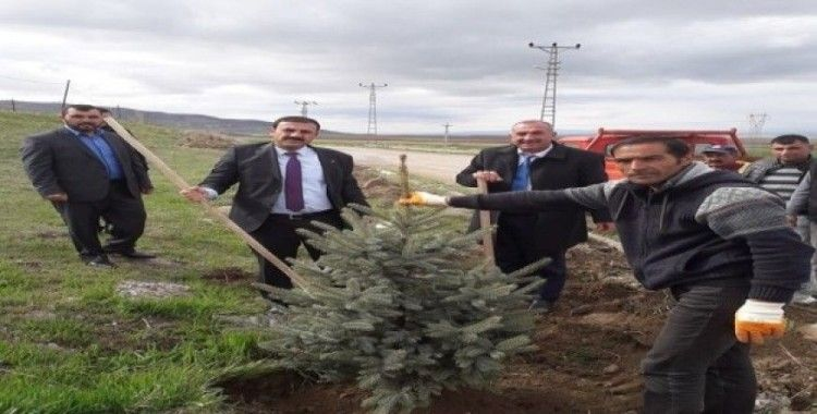 """Çiçekdağı İlçe Belediye Başkanı Hakanoğlu: """"Yeşil bir Çiçekdağı oluşturacağız"""""""
