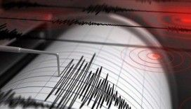 Japonya 6.3'lük depremle sallandı