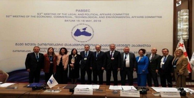AK Parti Giresun Milletvekili Cemal Öztürk Gürcistan'da Kamu Denetçiliği Kurumu'nun önemini anlattı