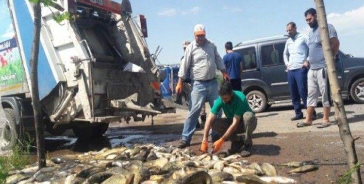 Bu kez de 1 ton 200 kilo balık çöp oldu
