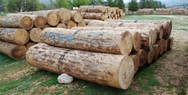 Gölyaka'da bin 556 metreküp orman emvali satıldı