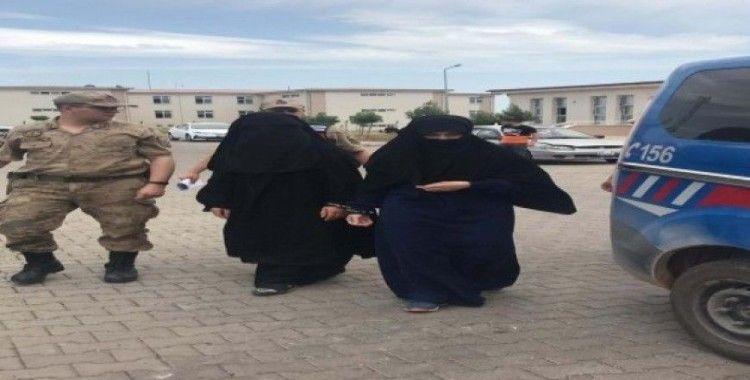 Akçakale'de DEAŞ'lı 2 kadın yakalandı
