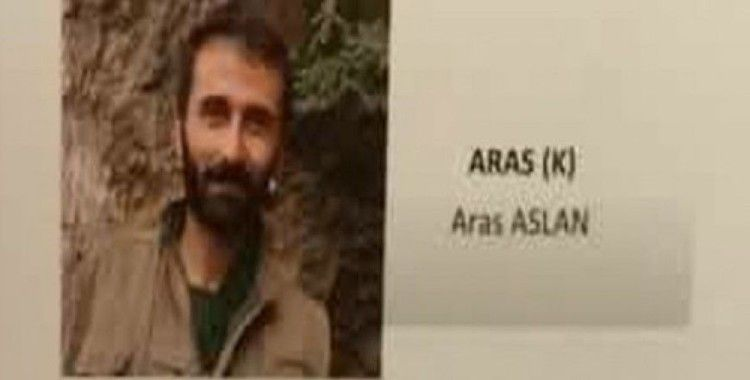 Giresun'da yakalanan PKK'lı Aras Aslan tutuklandı