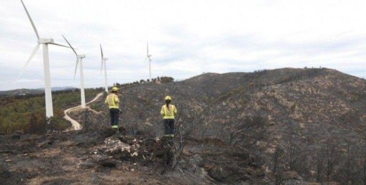 İspanya'da 220 hektar orman kül oldu