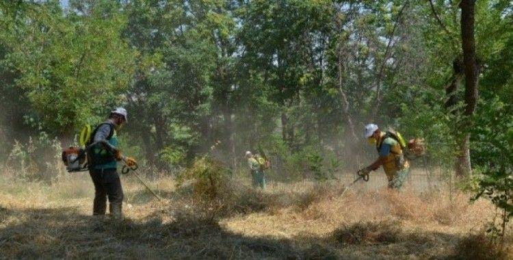 Yenişehir'deki fidanlık alanında hummalı temizlik çalışması