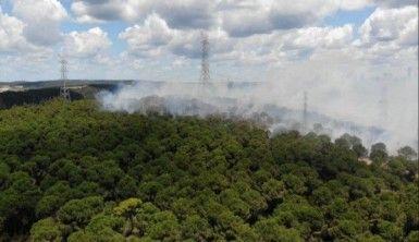 Hasdal'da askeri alandaki ormanda yangın