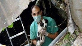 Kuyuya düşen köpek yavrularını belediye ekipleri kurtardı