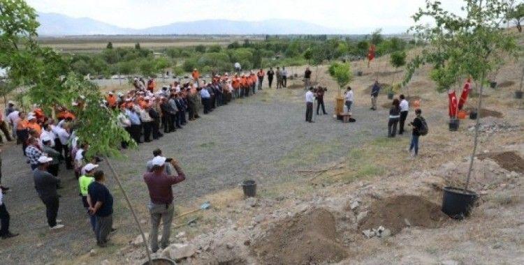 Erzincan'da 251 şehit anısına 251 adet fidan toprakla buluştu