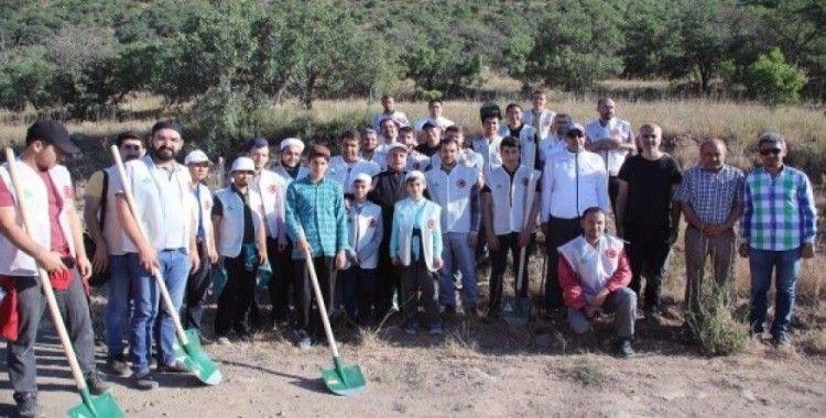 Ali Dağı'nda ağaçlandırma çalışmaları sürüyor