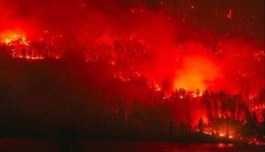 Sibirya'da 3 milyon hektar orman kül oldu