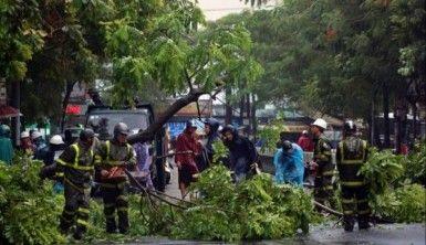 Wipha tayfunu Vietnam'ı vurdu