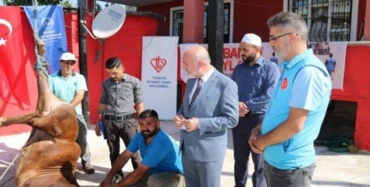 İçişleri Bakanı Soylu'nun kurbanı Van'da kesildi