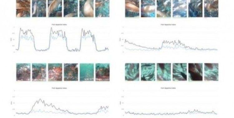 UMITRON, Fish Appetite Index'i piyasaya sürdü