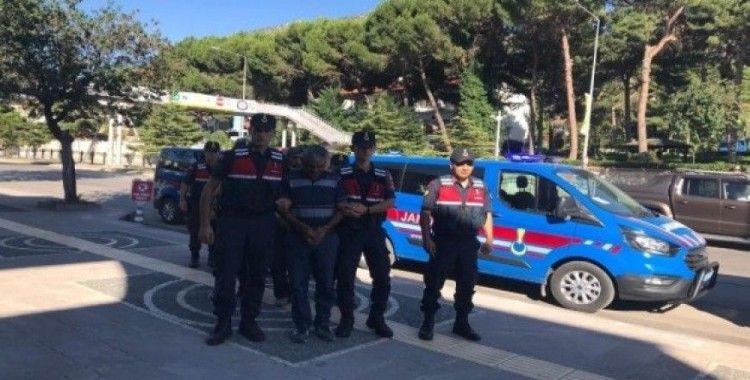 Jandarmadan uyuşturucu operasyonu: 4 tutuklama