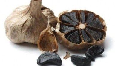 Siyah sarımsağı Türkiye'de üreten ilk kişi