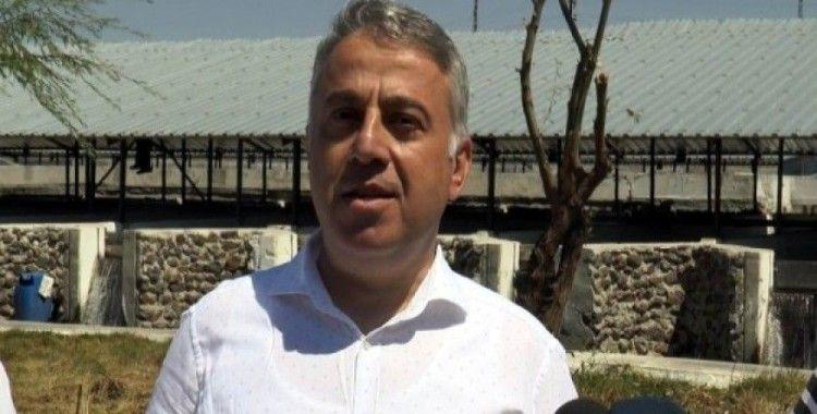 Kayseri'den yılda 10 milyon dolarlık balık ihracatı yapılıyor