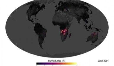 Afrika yanıyor ancak Amazonlar konuşuluyor