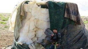 Kışın toplayıp sakladıkları karları Ağustos ayında satıyorlar