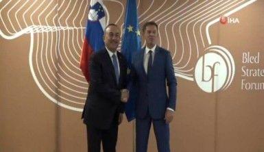 Dışişleri Bakanı Çavuşoğlu, Slovenya'da