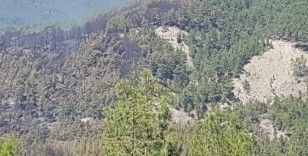 Kaş'ta orman yangını söndürüldü