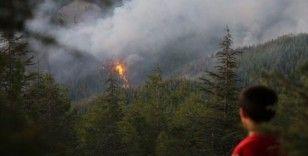 Kaş'taki orman yangınında hızlı müdahale büyümeyi önledi