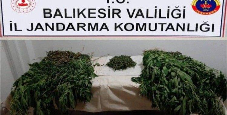 Balıkesir'de jandarmadan uyuşturucu operasyonu