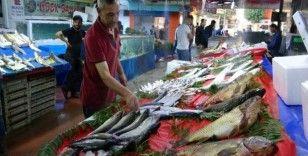 Tatlı su balıklarının rakibi, deniz balıkları Elazığ'da yerini aldı