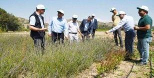 ESOGÜ Rektörü Şenocak'tan Orman Bölge Müdürlüğüne ziyaret