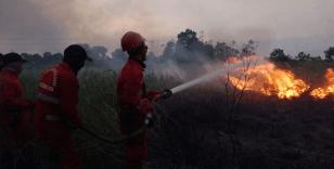 Endonezya'da orman yangınları günlük yaşamı zorlaştırıyor