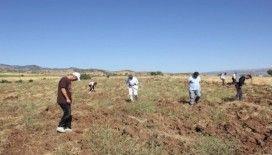 Bingöl'de arkeolojik yüzey araştırması, Demir ve Orta Çağ'a ait buluntular elde edildi