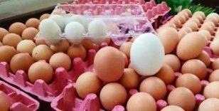 (Özel) 156 gramlık yumurta şaşırtıyor