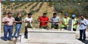 Kurtuluş Savaşı şehidinin mezarına sahip çıktılar