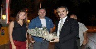 Muğla Orman Bölge Müdürü Yasin Yaprak görevine başladı