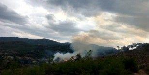 Muğla'da yıldırım yangınları