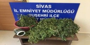 Suşehri'nde uyuşturucu operasyonu
