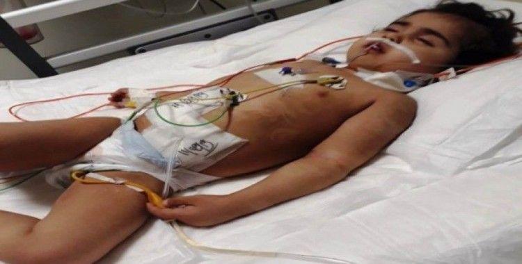 Doğuştan hasta olan çocuk böbrek nakli bekliyor