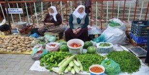 Ata tohumlarıyla yetiştirilen organik ürünlere ilgi