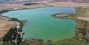Hafik Gölü, doğal SİT alanı ilan ediliyor