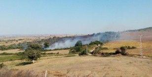 Tekirdağ'da orman yangını: Yüzlerce dönüm alan kül oldu
