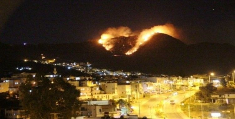 Bodrum'da Makilik alanda korkutan yangın