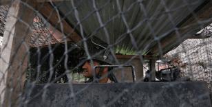Cammu Keşmir'de Hindistan yönetimi yanlısı siyasetçi tutuklandı