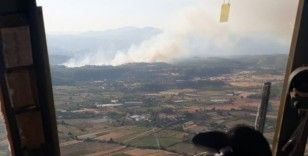 Serik'te orman yangını kontrol altına alındı