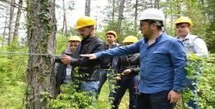 Ulus MYO ormancılık alanında bir ilki gerçekleştirdi